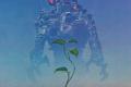 """Introduzioni Cosmo Oro: """"Il serpente dell'oblio"""" (Dreamsnake, 1978) di Vonda McIntyre"""