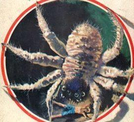"""I Classici della SF: """"Il pianeta dimenticato"""" (Forgotten Planet, 1954) di Murray Leinster"""
