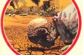 """Fantacitazioni: J.G.BALLARD """"Terra bruciata"""" (1989)"""